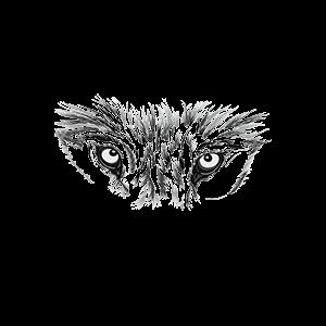 Wolf-Schuetzer